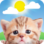Weather Kitty – App & Widget Weather Forecast 5.3.2 (MOD, Unlimited Money)